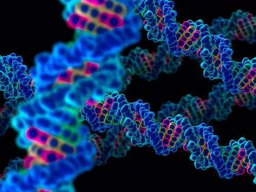 New Genome-Editing Method Could Make Gene Therapy More Precise and Effective