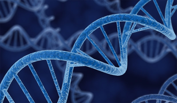 History Written In Our DNA