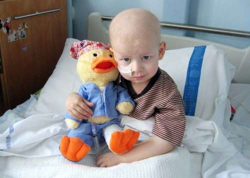 Stem cell transplantation for children with rare form of leukemia improves outcomes
