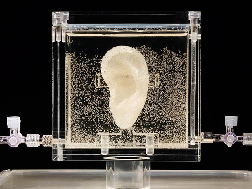 DNA-guided 3-D printing of human tissue is unveiled